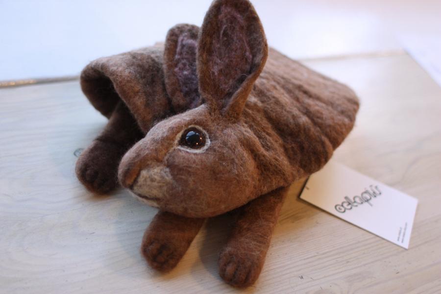 (Polski) królik na spacerze